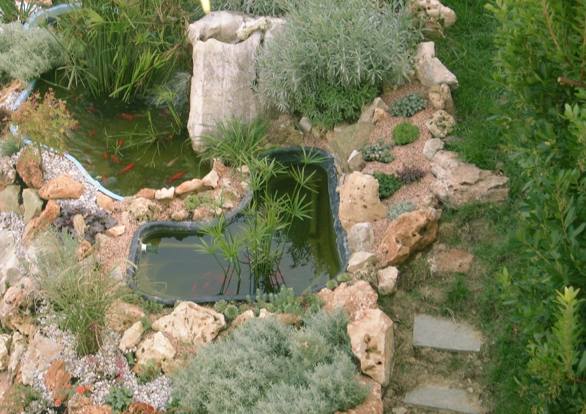 Vasche Preformate Per Laghetto.Vasche Preformate Laghetti Ornamentali Giardini Acquatici